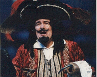 David Ross as Hook